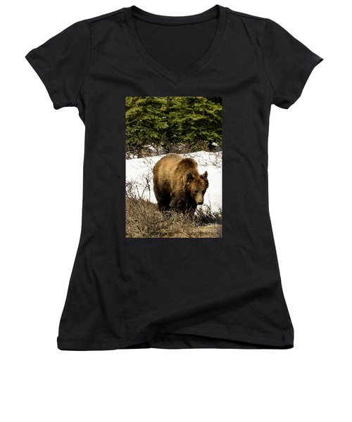 Rockies Grizzly Women's V-Neck T-Shirt