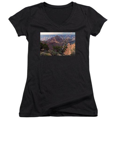 Vishnu Temple Women's V-Neck T-Shirt