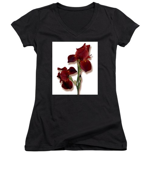 Root Beer Irises Women's V-Neck T-Shirt (Junior Cut) by Tara Hutton