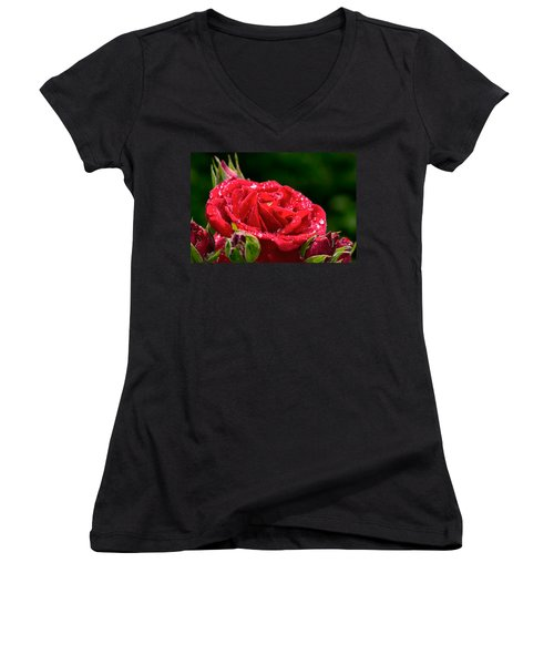 Women's V-Neck T-Shirt (Junior Cut) featuring the photograph Rose After Rain by Leif Sohlman