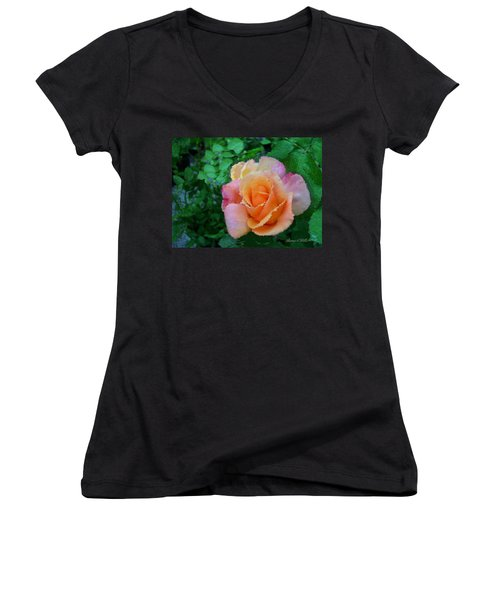 Women's V-Neck T-Shirt (Junior Cut) featuring the photograph Rose by Bonnie Willis