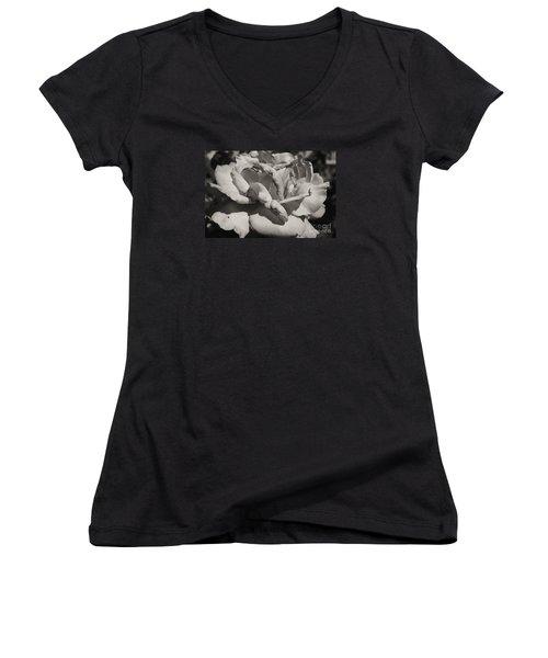 Rose Women's V-Neck T-Shirt (Junior Cut) by Cassandra Buckley