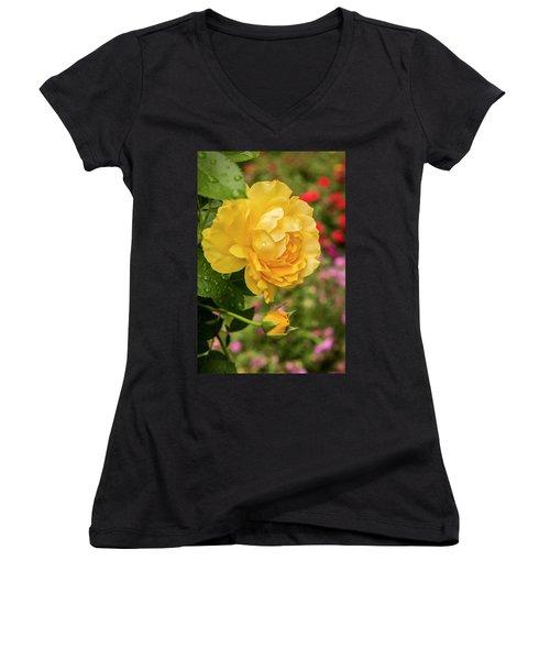 Rose, Julia Child Women's V-Neck