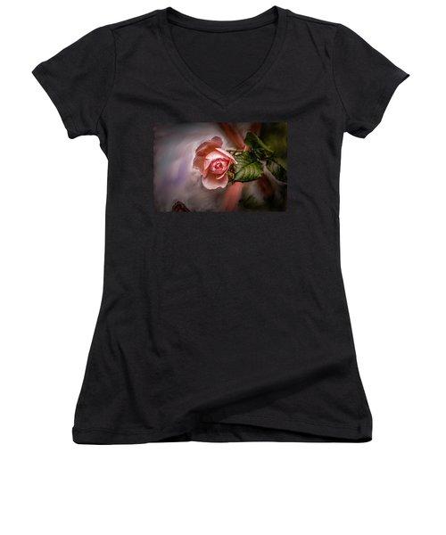 Rose On Paint #g5 Women's V-Neck