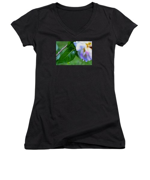 Rose Pedals Women's V-Neck T-Shirt