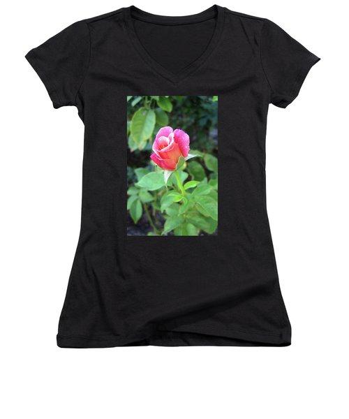 Rosebud Women's V-Neck T-Shirt (Junior Cut) by Mary Ellen Frazee