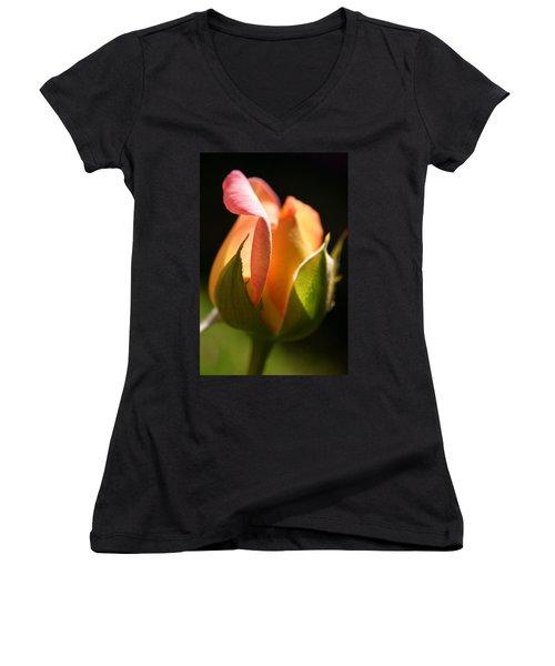 Rosebud Women's V-Neck T-Shirt (Junior Cut) by Ralph A  Ledergerber-Photography