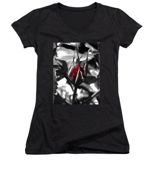 Rosebud Red Women's V-Neck T-Shirt