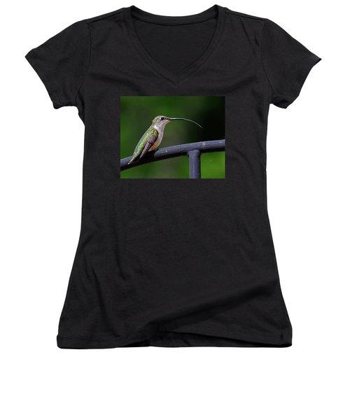 Ruby-throated Hummingbird Tongue Women's V-Neck T-Shirt (Junior Cut) by Ronda Ryan