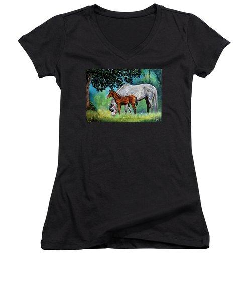 Safe Curiosity Women's V-Neck T-Shirt