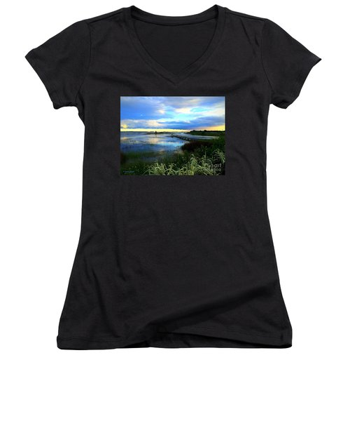 Salt Marsh Women's V-Neck T-Shirt (Junior Cut) by Shelia Kempf