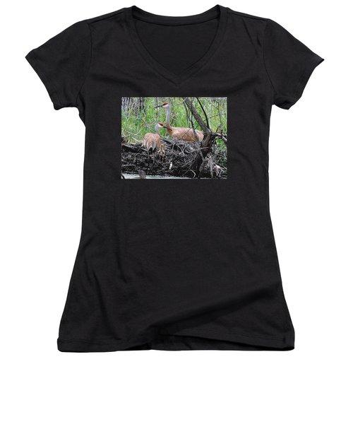 Sandhill Family  Women's V-Neck T-Shirt