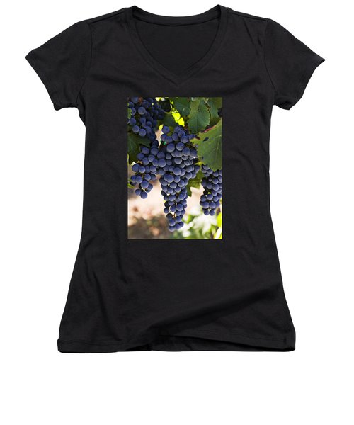Sauvignon Grapes Women's V-Neck