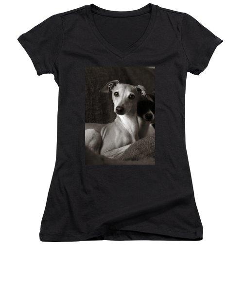 Say What Italian Greyhound Women's V-Neck