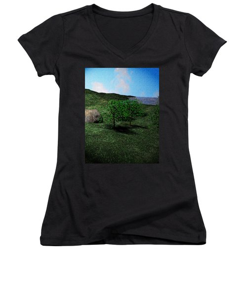 Scenery Women's V-Neck T-Shirt (Junior Cut) by James Barnes