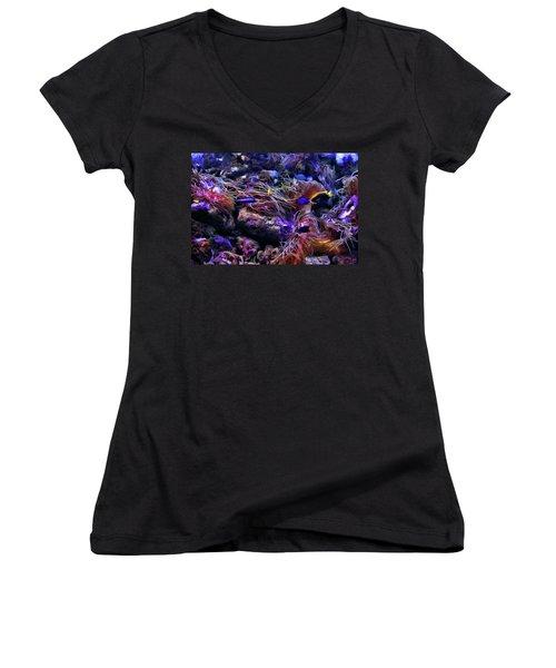Sea Spaghetti  Women's V-Neck T-Shirt