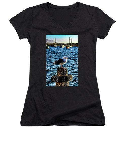 Seagull Perch Women's V-Neck