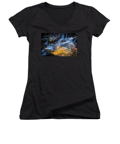 Seasons Collide Women's V-Neck T-Shirt (Junior Cut) by Parker Cunningham