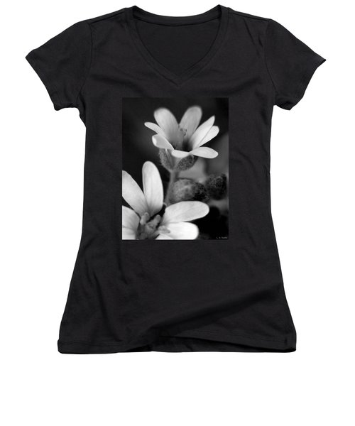 Second Look Women's V-Neck