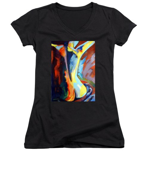 Secret Sources And Powers Women's V-Neck
