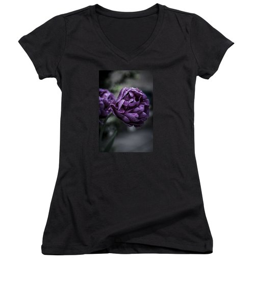 Sensational Dreams Women's V-Neck T-Shirt (Junior Cut) by Miguel Winterpacht