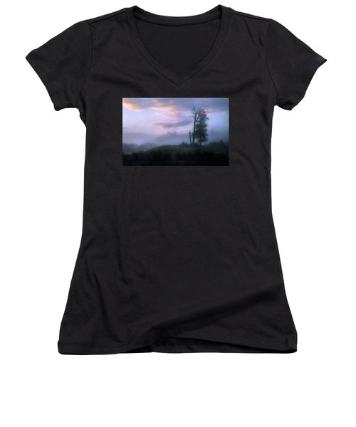 Sentinels In The Valley Women's V-Neck T-Shirt (Junior Cut) by Dan Jurak