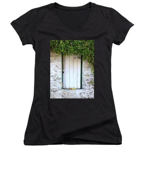 Serendipitous Door Women's V-Neck T-Shirt