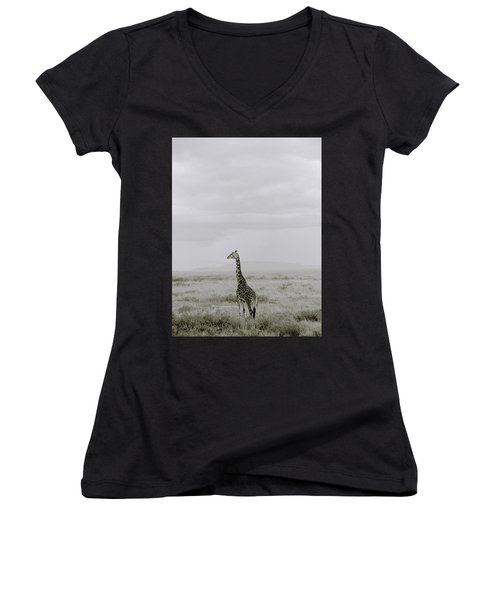 Serengeti Solitude Women's V-Neck T-Shirt (Junior Cut) by Shaun Higson