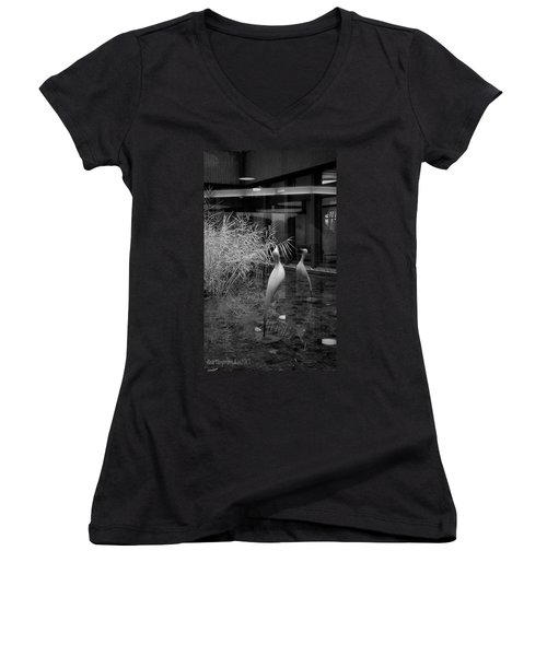Shadow And Light 13 - Reflections - A Women's V-Neck