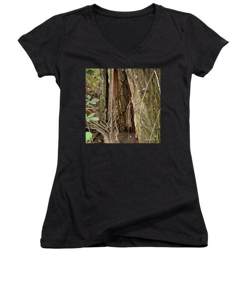 Shredded Tree Women's V-Neck