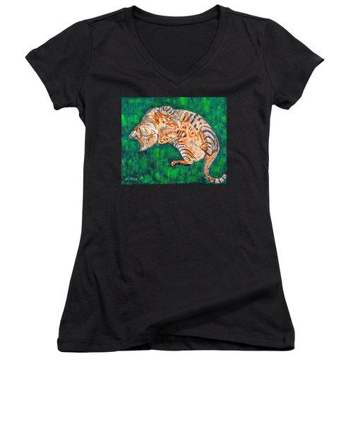 Siesta Women's V-Neck T-Shirt (Junior Cut) by Valerie Ornstein