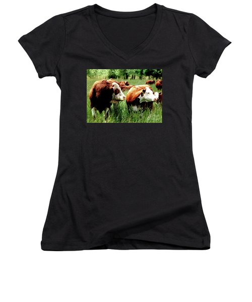 Simmental Bull And Hereford Cow Women's V-Neck T-Shirt (Junior Cut) by Larry Campbell
