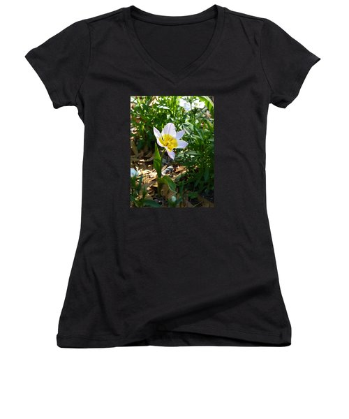 Women's V-Neck T-Shirt (Junior Cut) featuring the photograph Single Flower - Simplify Series by Carla Parris