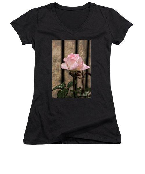 Single Pristine Women's V-Neck T-Shirt (Junior Cut) by Judy Wolinsky