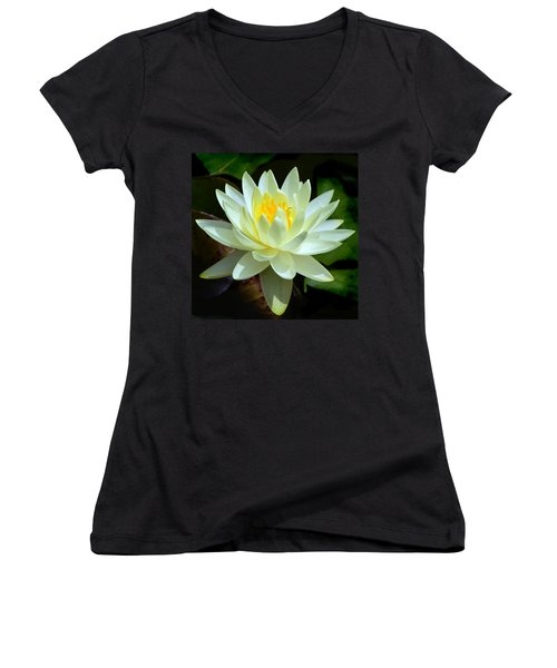 Women's V-Neck T-Shirt (Junior Cut) featuring the photograph Single Yellow Water Lily by Kathleen Stephens