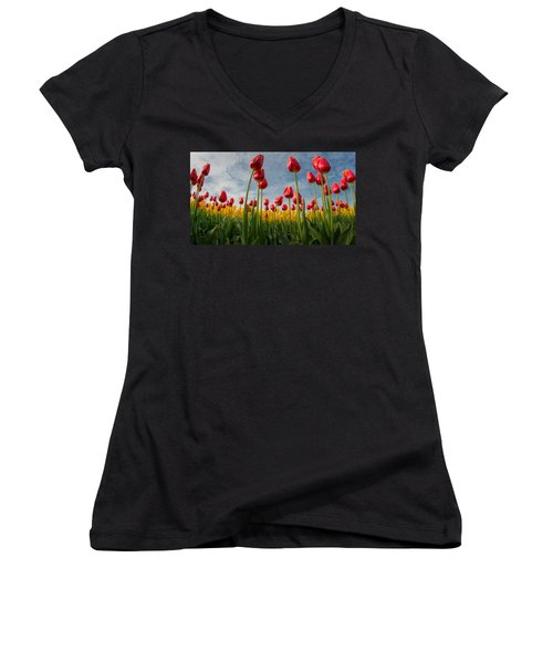 Women's V-Neck T-Shirt (Junior Cut) featuring the photograph Skagit Valley Spring Joy by Dan Mihai