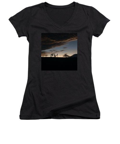 Skyline Women's V-Neck T-Shirt (Junior Cut) by Eli Ortiz