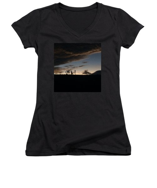 Skyline Women's V-Neck T-Shirt (Junior Cut)