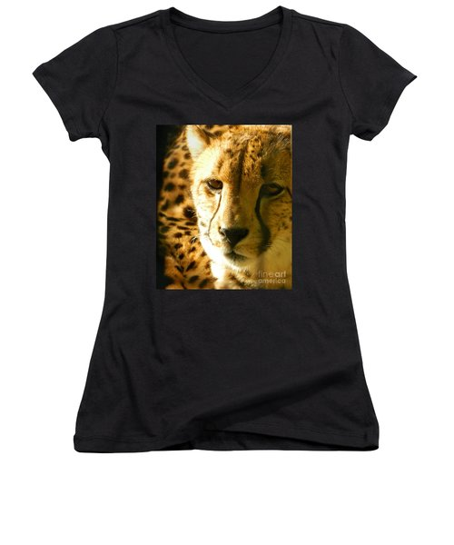 Sleepy Cheetah Cub Women's V-Neck T-Shirt (Junior Cut) by Emmy Marie Vickers
