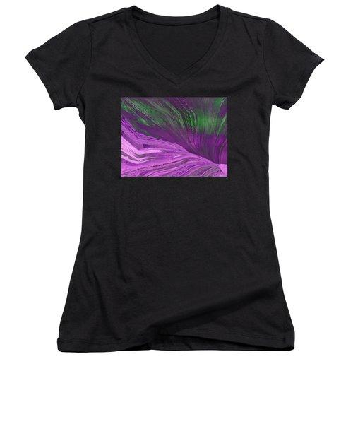 Slippery Slope Women's V-Neck T-Shirt