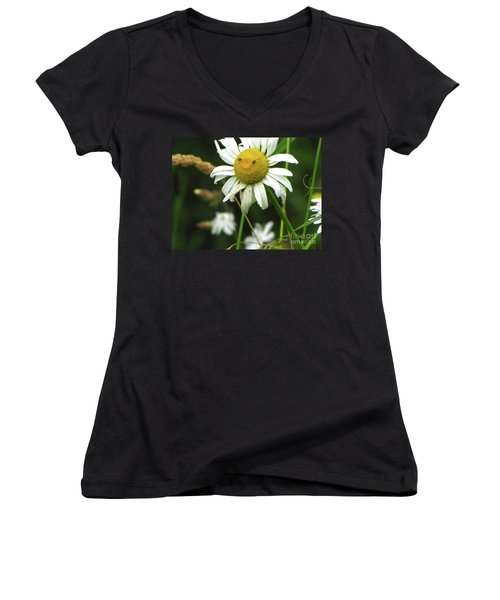 Smiley Face Ox-nose Daisy Women's V-Neck T-Shirt (Junior Cut) by Sean Griffin