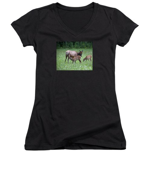 Smoky Mountain National Park Elk Cow Nursing Calf Women's V-Neck (Athletic Fit)