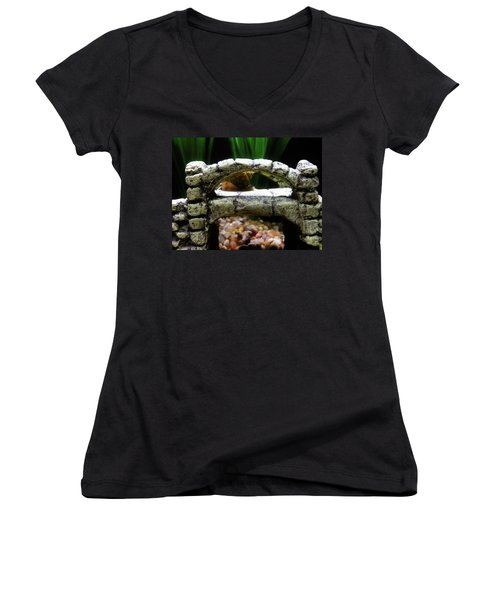 Women's V-Neck featuring the photograph Snail Over A Bridge by Robert Knight