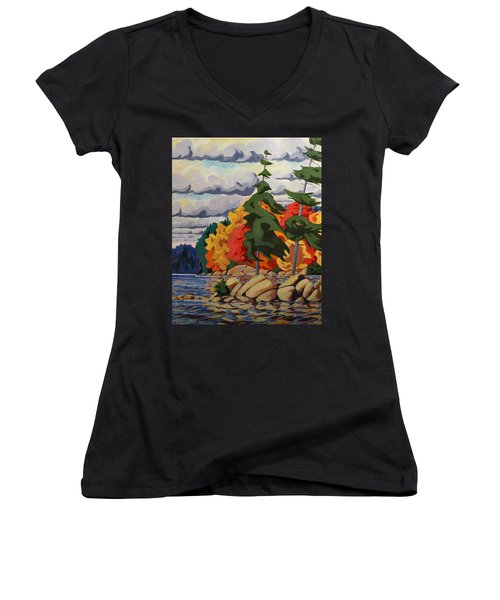 Snake Island In Fall-close Women's V-Neck T-Shirt (Junior Cut) by David Gilmore