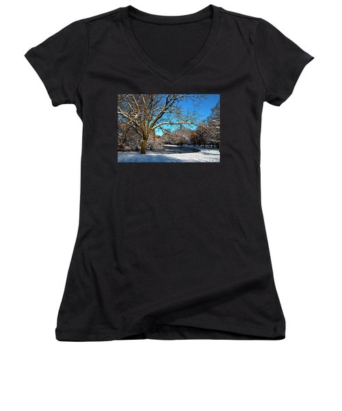 Snowy Pond Women's V-Neck (Athletic Fit)