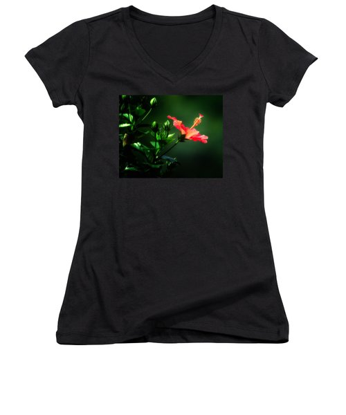 Soft Red Hibiscus Plant Women's V-Neck