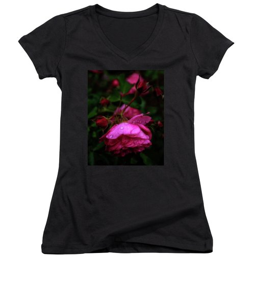 Women's V-Neck T-Shirt featuring the photograph Soft Rose After Rain by Alan Raasch