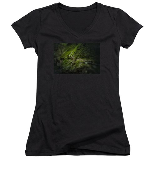 Softly Women's V-Neck T-Shirt