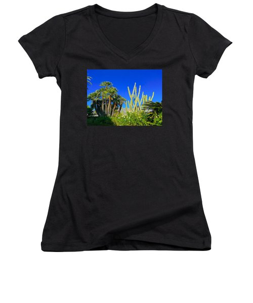 Southern France Beauty Women's V-Neck