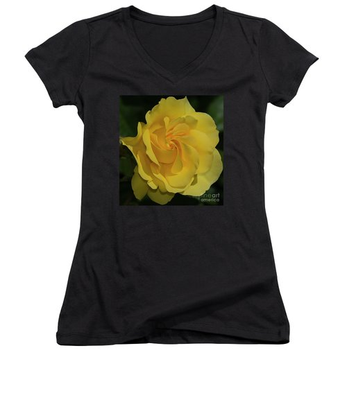 Sparkle And Shine Rose Women's V-Neck (Athletic Fit)